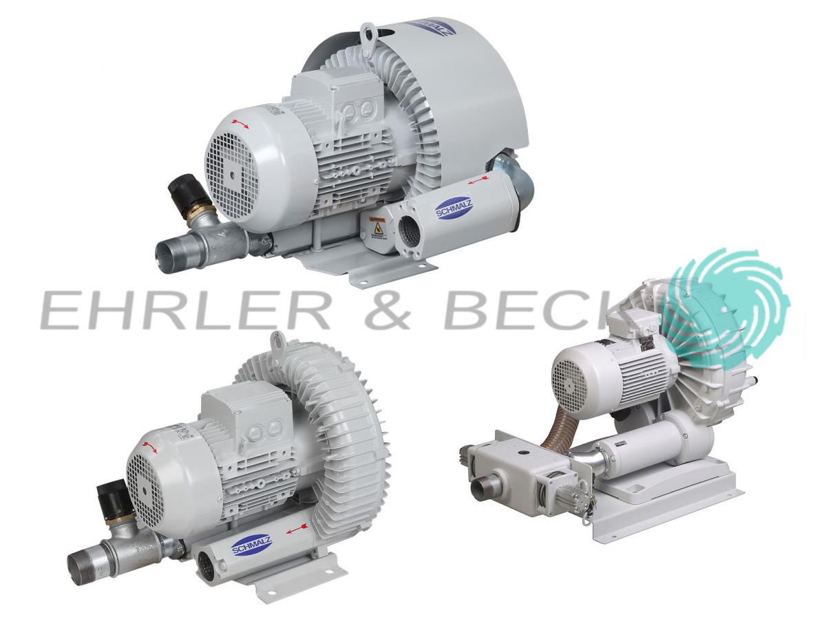 Substitute Pumps Ehrler Und Beck